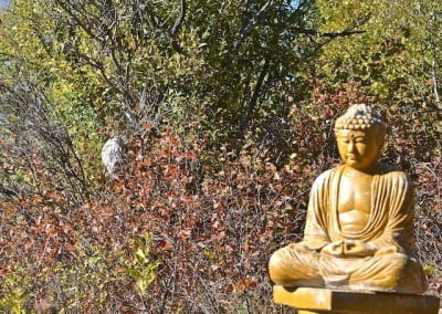 A large hornet's nest built behind the Buddha at Sukhavati.