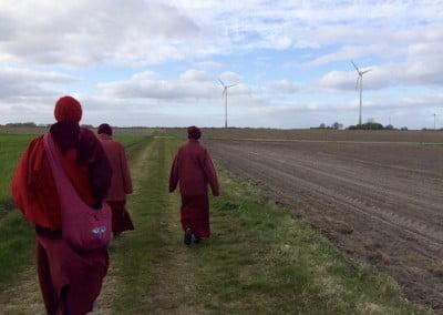 Buddhist nuns walking along a field.