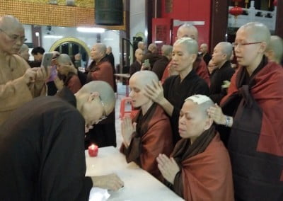 Standing nuns in a row behind sitting nuns, praying