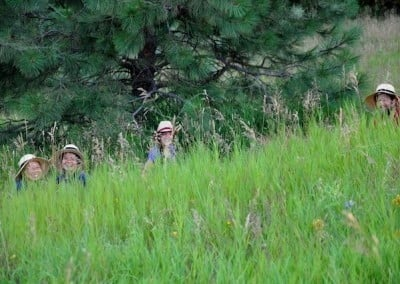 The knapweed crew peeks out from behind the  tall grasses in the upper meadow.