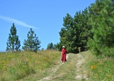 Venerable  Jampa takes a walk in the upper meadow  between sessions.