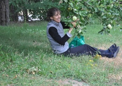 Victoria enjoys taking the fruit from our wonderful old apple tree.