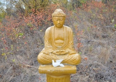 The Buddha and the glass dove symbolize peace.