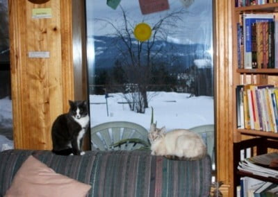 Two cats lounge on the back of a couch in front of a window that reveals a snowy landscape beyond