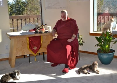 A Buddhist nun sits in a chair, two cats on the floor, one cat on the windowsill
