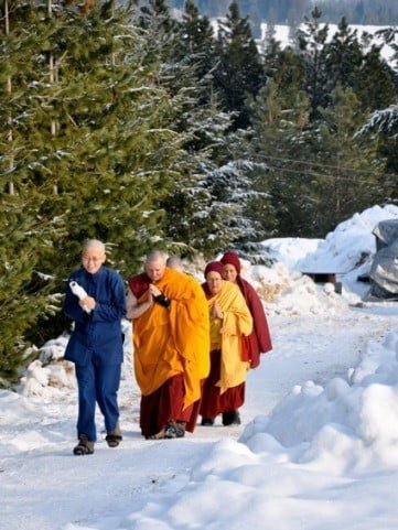 Ruby in the company of three nuns and Venerable Chodron walk through the snow to the meditation hall.