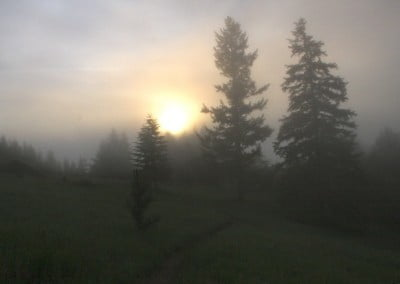 The sun being covered by the fog, blurry sunlight and surroundings.