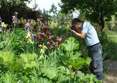 Leng Poh photographs the Abbey garden.