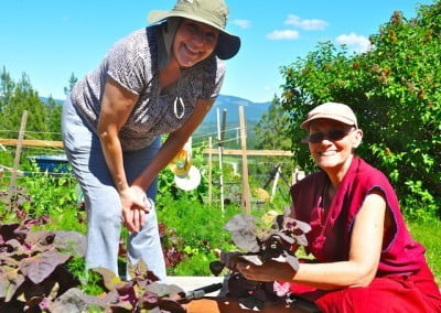Dawn helps Ven. Chonyi in the vegetable garden.
