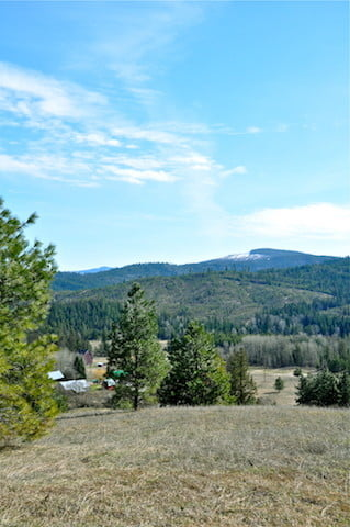 One of the spectacular views from a high point at Tara's Refuge, the neighboring property we bought last fall.