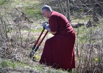 A Buddhist nun cuts debris in a field