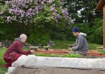 Jack and Venerable Chonyi check the newly sprouted salad greens in the Abbey veggie garden