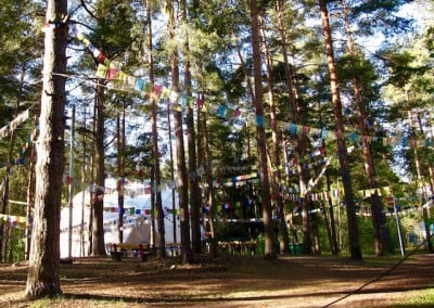 A forest with prayer flags.