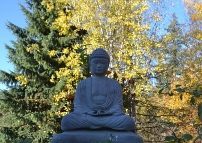 The Buddha welcomes our Sharing the Dharma Day guests.