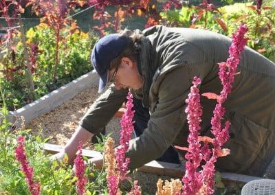 A man working on the veggie garden.