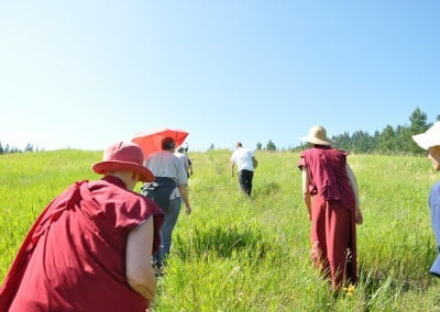 The back views of two buddhist nuns and some men walking up the upper meadow.