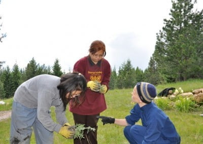 Dani gives the transmission on identifying knapweed to Elycia and Connie.
