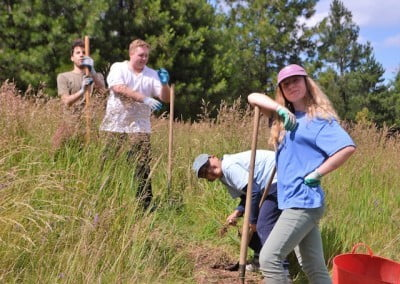 Young adults in meadow with shovels working