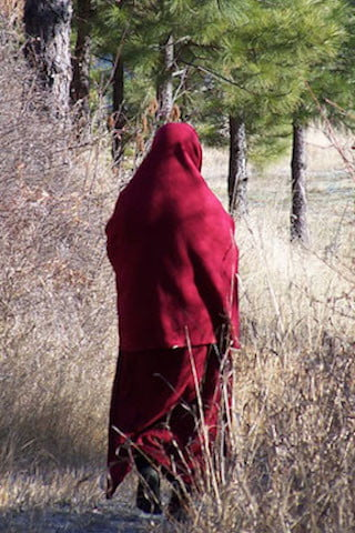 Who is that mysterious robed stranger? Venerable  Tsenla, who translated for Rinpoche, takes a walk in the bright open air.