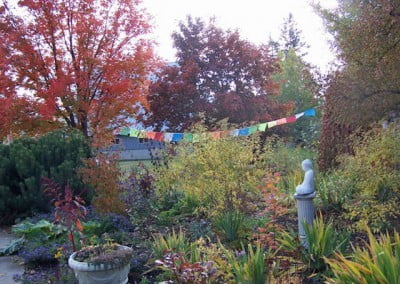 The garden is ablaze with color, dressing itself in the finery of fall in preparation for the Buddha.