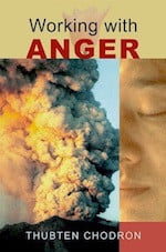 Working with Anger book cover