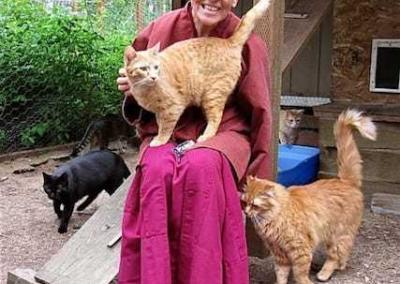 Seated smiling nun surrounded by cats