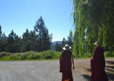 two nuns walking in sunshine