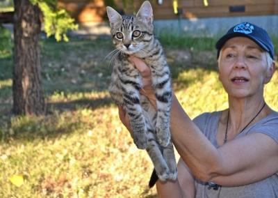lay woman holding up a cat