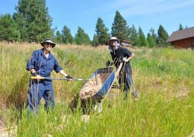 two people wit wheelbarrow in meadow