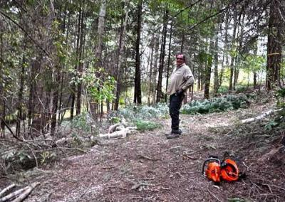 Man standing in a forest with chainsaw