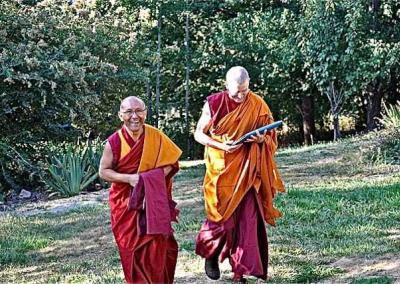 two monks walking near trees