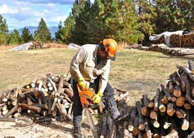 Man chainsawing wood