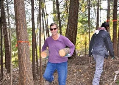 Woman holding short logs under each arm