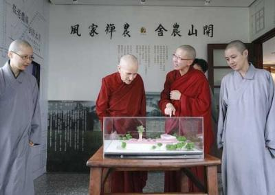 Nuns look at display