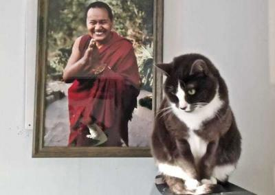 Maitri and Lama Yeshe.