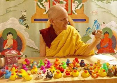 "Ven. Chodron shows how we habitually try to"" line up our duckies"" to arrange our lives."