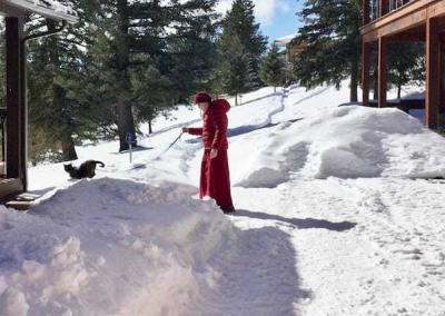 Ven. Samten gets the snow-shy Upekkha outside into the sun.