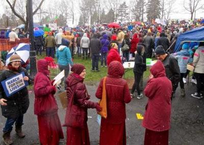 nuns in protest crowd