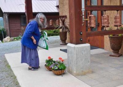 Cheri plants new hanging baskets at the Chenrezig Hall front entrance.