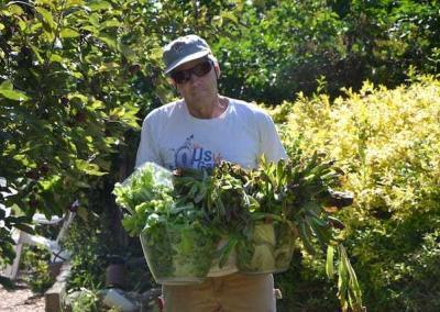 Doug finds plenty of salad in the garden for a delicious lunch.