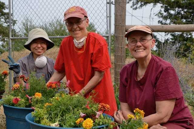 Three nuns planting flowers.