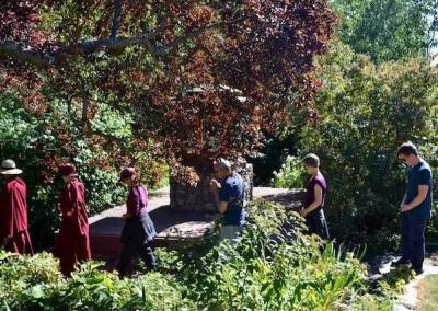 The slow walkers mindfully circumambulate the Aspiration Buddha in the garden.