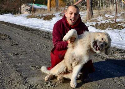 Ven. Tenzin from Russia makes friends with Tashi, the neighbors' young dog.