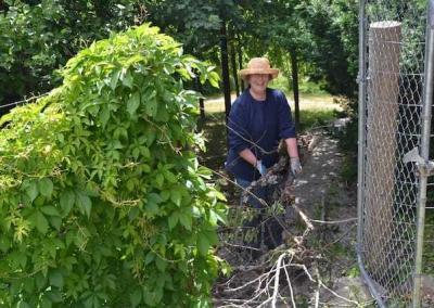 laywoman gardening