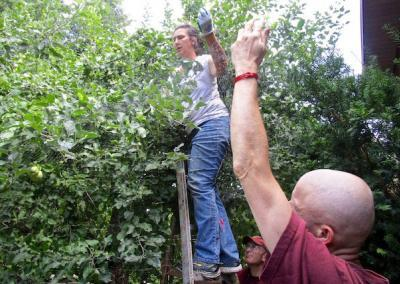 Patricia spreads the net in the higher branches with ground support from Ven. Losang and Ken.