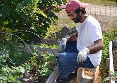 Long-term visitor Kishan helps to weed the vegetable beds.