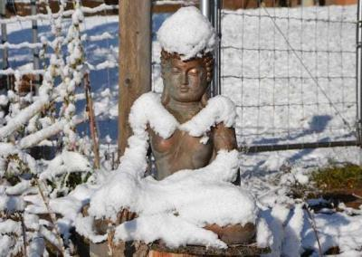 A beautiful snow-covered Buddha in the garden.
