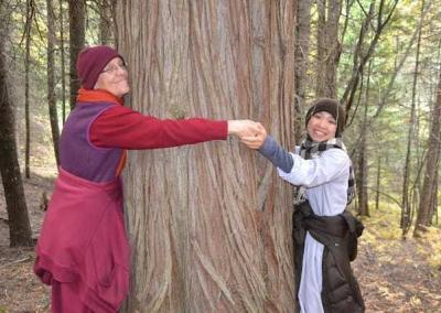 Vens. Semkye and guest nun Ven. Thuc hug a big cedar tree in our forest rejoicing in nature's strength and beauty.