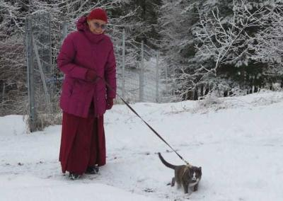 Ven. Chodron's cat Maitri takes Ven. Kunga for a walk in the snow