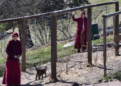 Nuns with cat in garden.